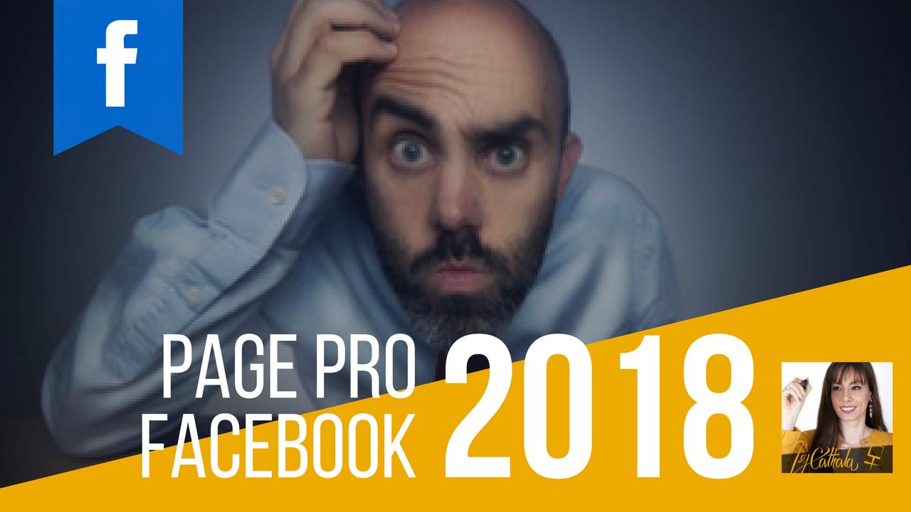 FACEBOOK PRO, Comment créer une page professionnelle en 2018